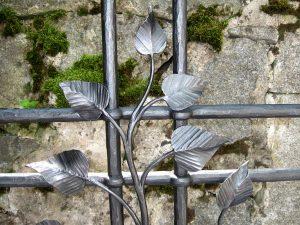 kreuz-pflanze-detail